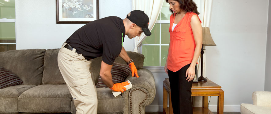 Greenwich, CT carpet upholstery cleaning